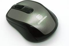 DSC00779